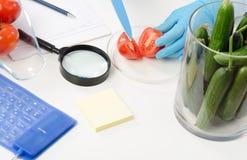 Τα χέρια τεχνικών κόβουν μια ντομάτα στο μισό Στοκ φωτογραφίες με δικαίωμα ελεύθερης χρήσης