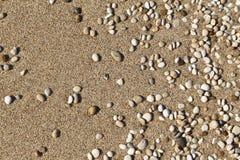 τα χαλίκια στρώνουν με άμμο μικρό Στοκ εικόνες με δικαίωμα ελεύθερης χρήσης