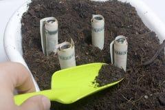 Τα χρήματα αυξάνονται από το έδαφος σε ένα δοχείο λουλουδιών Λογαριασμοί εγγράφου, που διπλώνονται σε έναν σωλήνα, ραβδί από το έ Στοκ φωτογραφία με δικαίωμα ελεύθερης χρήσης