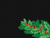 Τα Χριστούγεννα ή το νέο πρότυπο σχεδίου υποβάθρου ευχετήριων καρτών έτους του στεφανιού ελαιόπρινου ή του δέντρου έλατου Χριστου Στοκ Φωτογραφίες