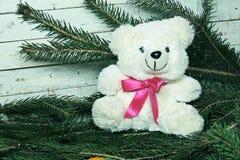 Τα Χριστούγεννα αντέχουν Στοκ εικόνα με δικαίωμα ελεύθερης χρήσης