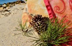 Τα Χριστούγεννα από το burgundy κώνων πεύκων άμμου παραλιών θάλασσας κόκκινο organza ρίχνουν τα Χριστούγεννα τον Ιούλιο Στοκ εικόνες με δικαίωμα ελεύθερης χρήσης