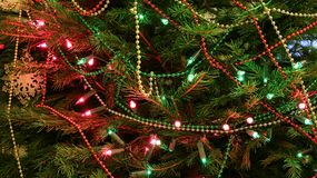 Τα Χριστούγεννα βρωμίζουν στοκ εικόνες με δικαίωμα ελεύθερης χρήσης