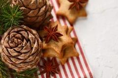 τα Χριστούγεννα διακοσμούν τις φρέσκες βασικές ιδέες διακοσμήσεων Χριστουγεννιάτικο δέντρο κλαδίσκων, μελόψωμο Χριστουγέννων, ερυ Στοκ Εικόνες