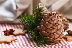τα Χριστούγεννα διακοσμούν τις φρέσκες βασικές ιδέες διακοσμήσεων Χριστουγεννιάτικο δέντρο κλαδίσκων, μελόψωμο Χριστουγέννων, ερυ Στοκ φωτογραφία με δικαίωμα ελεύθερης χρήσης