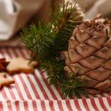 τα Χριστούγεννα διακοσμούν τις φρέσκες βασικές ιδέες διακοσμήσεων Χριστουγεννιάτικο δέντρο κλαδίσκων, μελόψωμο Χριστουγέννων, ερυ Στοκ εικόνες με δικαίωμα ελεύθερης χρήσης