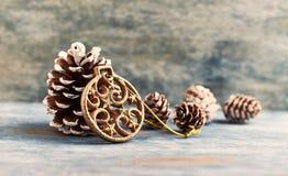 τα Χριστούγεννα διακοσμούν τις φρέσκες βασικές ιδέες διακοσμήσεων μπλε σκιά διακοσμήσεων απεικόνισης λουλουδιών Χριστουγέννων στε στοκ φωτογραφίες