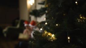 Τα Χριστούγεννα εορτασμού ζεύγους εξετάζουν ένα λεύκωμα των καλών φωτογραφιών που θολώνονται Πρώτο σχέδιο του δέντρου στην εστίασ απόθεμα βίντεο