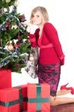 τα Χριστούγεννα ευτυχή π&alp Στοκ Εικόνες