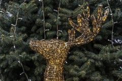 τα Χριστούγεννα διακοσμούν τις φρέσκες βασικές ιδέες διακοσμήσεων ελάφια που φωτίζονται Στοκ εικόνα με δικαίωμα ελεύθερης χρήσης