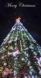 Τα Χριστούγεννα διακόσμησαν το όμορφο κείμενο σύνθεσης δέντρων Στοκ Εικόνα