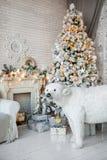 Τα Χριστούγεννα και το νέο έτος διακόσμησαν το εσωτερικό δωμάτιο με παρουσιάζουν και Στοκ Εικόνες
