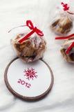 τα Χριστούγεννα μεταχειρίζονται Στοκ Φωτογραφίες