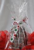 Τα Χριστούγεννα μεταχειρίζονται Στοκ Εικόνα