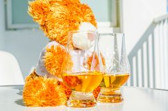 Τα Χριστούγεννα teddy αντέχουν με το ποτήρι του ενιαίου ουίσκυ βύνης, σύμβολο ο Στοκ Εικόνες
