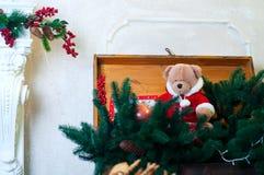 Τα Χριστούγεννα teddy αντέχουν στους κλάδους δέντρων Στοκ Φωτογραφία