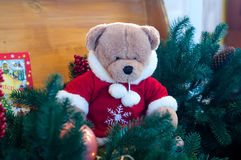 Τα Χριστούγεννα teddy αντέχουν στους κλάδους δέντρων Στοκ εικόνα με δικαίωμα ελεύθερης χρήσης