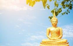 Τα χρυσά αγάλματα του Βούδα στο υπόβαθρο ουρανού στοκ εικόνες