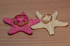 Τα χρυσά γαμήλια δαχτυλίδια είναι τα αστέρια Στοκ Εικόνες
