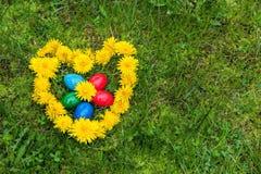 Τα χρωματισμένα αυγά Πάσχας βρίσκονται στην πράσινη χλόη στις πικραλίδες, που σχεδιάζονται υπό μορφή καρδιάς ημέρα ηλιόλουστη Στοκ εικόνες με δικαίωμα ελεύθερης χρήσης