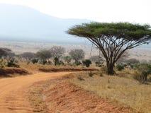Τα χρώματα της Αφρικής στοκ φωτογραφίες