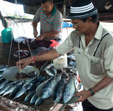 τα ψάρια ζυγίζουν Στοκ εικόνα με δικαίωμα ελεύθερης χρήσης