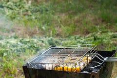 Τα ψάρια και τα γλυκά πιπέρια ψήνονται στη σχάρα στον κήπο Στοκ Εικόνες