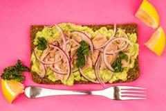Τα ψάρια και το αβοκάντο τόνου με τα κρεμμύδια στη σίκαλη πασπαλίζουν το ανοικτό πρόσωπο Sandwic με ψίχουλα στοκ φωτογραφία με δικαίωμα ελεύθερης χρήσης