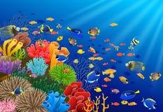 Τα ψάρια κολυμπούν στον υποβρύχιο απεικόνιση αποθεμάτων