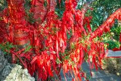 Τα ψηλά δέντρα είναι εντελώς διακοσμημένα με τις κόκκινες κορδέλλες πολλές κόκκινες κορδέλλες που δένονται στα δέντρα Ασία Στοκ φωτογραφία με δικαίωμα ελεύθερης χρήσης