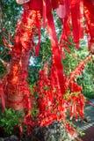 Τα ψηλά δέντρα είναι εντελώς διακοσμημένα με τις κόκκινες κορδέλλες πολλές κόκκινες κορδέλλες που δένονται στα δέντρα Ασία Στοκ Εικόνες