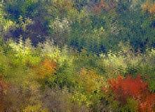 Τα ψηφιακά αφηρημένα χαοτικά κύματα ζωγραφικής στις διαφορετικές σκιές των ζωηρόχρωμων φύλλων δέντρων ανοίξεων χρωματίζουν το υπό διανυσματική απεικόνιση