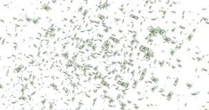 Τα ψηφιακά δολάρια που πετούν στη δίνη στο άσπρο υπόβαθρο με εξασθενίζουν έξω, βρόχος άνευ ραφής 4K και ψήφισμα 1080