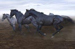 Τα όμορφα ισχυρά χαλαρά άλογα είναι ακαταμάχητα στο τρέξιμό τους στοκ εικόνες