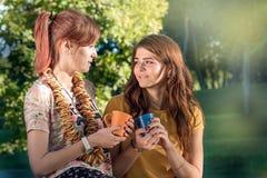 Τα όμορφα κορίτσια έχουν το τσάι από μια κούπα, ένα πικ-νίκ υπαίθρια Στοκ Εικόνες