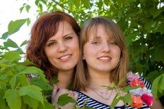 Τα όμορφα κορίτσια κοιτάζουν έξω από τους θάμνους Στοκ Εικόνες