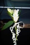 Τα όμορφα λουλούδια διακοσμούν Στοκ Εικόνες