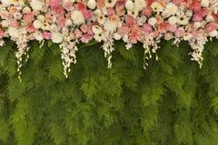 Τα όμορφα λουλούδια με την πράσινη φτέρη αφήνουν το υπόβαθρο τοίχων για το wed Στοκ Εικόνες