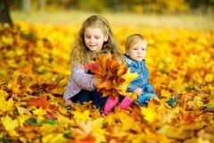 τα όμορφα παιδιά παίζουν με πεσμένα τα φθινόπωρο φύλλα Στοκ φωτογραφία με δικαίωμα ελεύθερης χρήσης