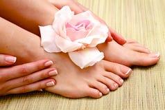 τα όμορφα πόδια των γαλλικών απομόνωσαν την τέλεια SPA pedicure καρφιών Στοκ φωτογραφία με δικαίωμα ελεύθερης χρήσης