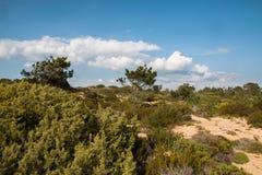 Τα όμορφα τοπία του ίχνους ψαράδων ` s σύρουν το Αλεντέιο, ίχνος Πορτογαλία πεζοπορίας Vicentina αλλαγής βάρδιας Στοκ φωτογραφία με δικαίωμα ελεύθερης χρήσης