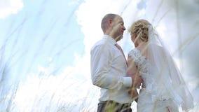 Τα όμορφα newlyweds συνδέουν, νύφη και νεόνυμφος που στέκονται σε έναν τομέα και που κρατούν τα χέρια ενάντια στο μπλε ουρανό απόθεμα βίντεο
