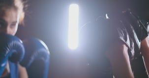 Τα όμορφα punching κατάρτισης γυναικών Kickboxing γάντια πυγμαχίας εστίασης στην άγρια δύναμη στούντιο ικανότητας εγκαθιστούν τη  απόθεμα βίντεο