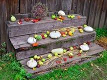 Τα ώριμα λαχανικά πτώσης είναι τα παλαιά ξύλινα βήματα Στοκ Φωτογραφίες