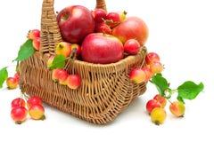 Τα ώριμα μήλα σε ένα ψάθινο καλάθι κλείνουν επάνω σε ένα άσπρο υπόβαθρο Στοκ φωτογραφία με δικαίωμα ελεύθερης χρήσης