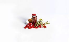 Τα ώριμα φρούτα άγρια αυξήθηκαν με μικρά μπουκάλια Στοκ Φωτογραφία