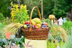 Τα ώριμα φρούτα φθινοπώρου είναι στο καλάθι στα επιτραπέζια δαμάσκηνα, αχλάδια, Στοκ εικόνες με δικαίωμα ελεύθερης χρήσης