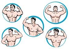 Τα bodybuilders κινούμενων σχεδίων παρουσιάζουν τους μυς διανυσματική απεικόνιση