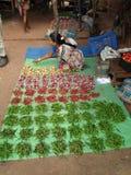 τα chilis Ινδός πωλούν τη γυναίκ&al Στοκ Φωτογραφία