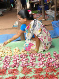τα chilis Ινδός πωλούν τη γυναίκ&al Στοκ φωτογραφίες με δικαίωμα ελεύθερης χρήσης